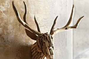 Woody Deer Head
